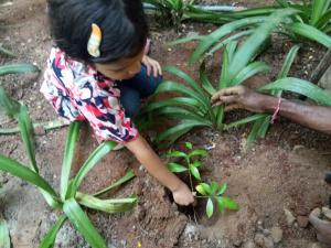 Each One Plant One (Parents Activity - Environment)